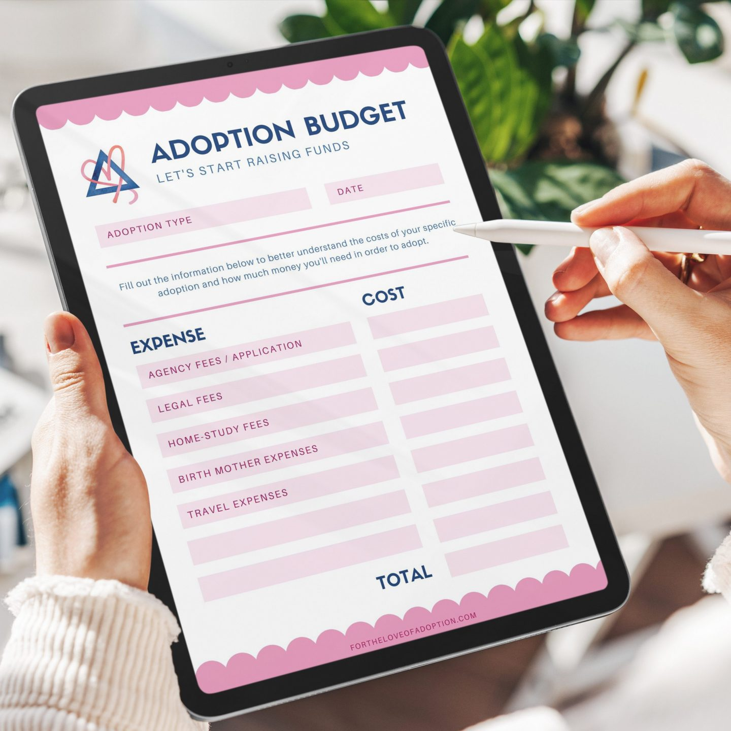 5 Adoption Steps to Get You Started…Today