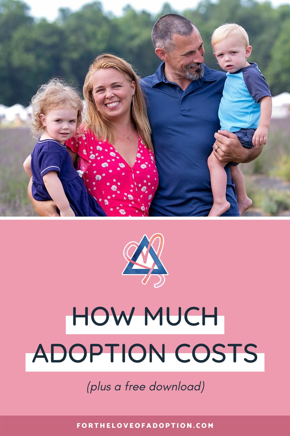 5 Types of Adoption and Their Associated Costs
